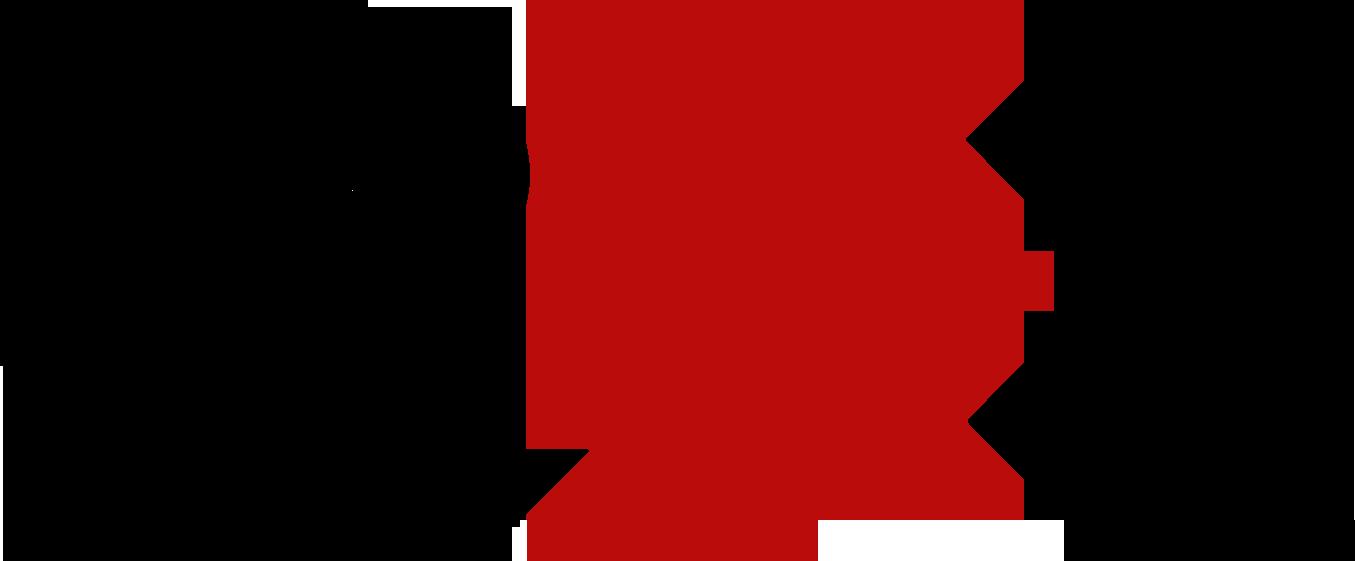 2X Software Logo Large